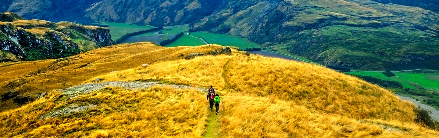 New Zealand Travel Guide Overview